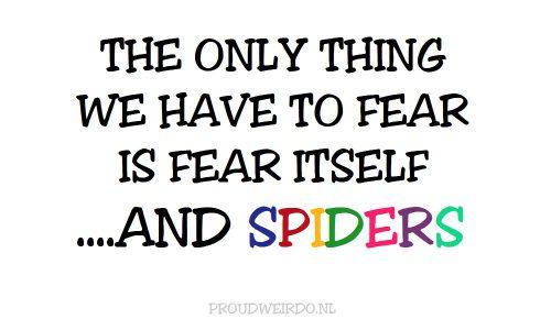 1. Een spin in de nacht, betekent een klopjacht